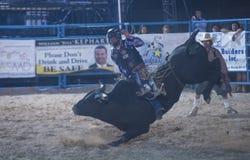 Helldorado days Rodeo Stock Photo