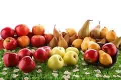 Helle Äpfel und Birnen Stockbild