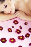 Helle Abbildung des reizenden Mädchens mit Blume Lizenzfreie Stockfotografie