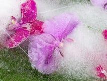 Helle Abstraktion mit Orchideen Lizenzfreies Stockbild
