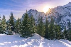 Helle alpine Landschaft im Winter Lizenzfreie Stockfotos