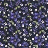 Helle blaue Amaryllis und kleine weiße Blumen mit Blättern auf Marineblauhintergrund vektor abbildung