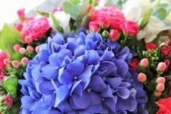 Helle Blumen Stockbild
