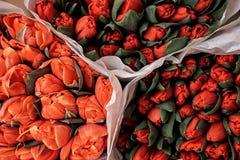 Helle bunte rote und orange Tulpenbündel am Blumenmarkt Lizenzfreies Stockbild
