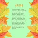 Helle bunte vertikale Grenze mit Herbstlaub auf blauem Hintergrund Stockbild