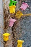 Helle dekorative Vogelhäuser Lizenzfreie Stockfotos