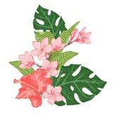Helle exotische tropische Blumen und Blätter Stockfoto