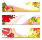 Helle Fahnen mit exotischen Früchten stock abbildung