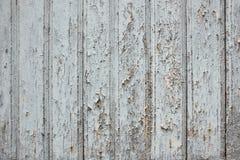Helle Farbenschale von der Holzoberfläche Stockfotografie