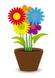Helle farbige Blumen in einem Potenziometer Stockfotografie