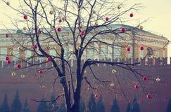 Helle farbige Weihnachtsdekorationen auf einem entlaubten Baum in MOS Lizenzfreie Stockfotos