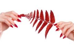 Helle festliche rote Maniküre auf weiblichen Händen Nageldesign lizenzfreie stockfotografie