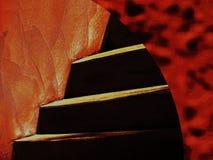 Helle Filter werfen die Keller-Treppe nieder Stockbild
