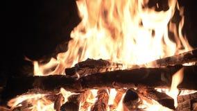 Helle Flamme des Feuers im Grill in der Nacht stock video