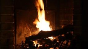 Helle Flamme von Feuerbränden stock video