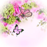 Helle Frühlingschrysantheme Lizenzfreie Stockfotografie
