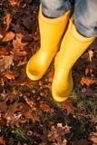 Helle gelbe Gummistiefel auf dem Herbstlaub Stockfotografie