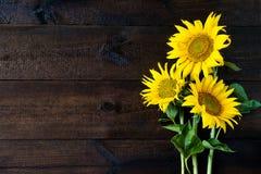Helle gelbe Sonnenblumen auf hölzernem Brett der natürlichen rustikalen Beschaffenheit lizenzfreie stockfotografie