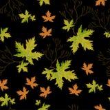 Helle Herbstgrünblätter Lizenzfreies Stockbild