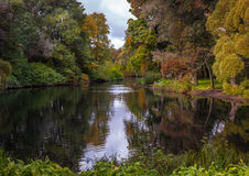 Helle Herbstlandschaft Lizenzfreie Stockfotografie