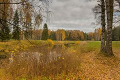 Helle Herbstwasserlandschaft Stockfotos