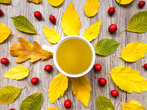 Helle Herbstzusammensetzung mit der Teeschale, verziert mit Blättern auf hölzernem Hintergrund Draufsicht, flache Lage, Ansicht v Lizenzfreie Stockfotografie