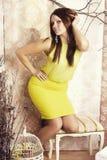 Helle junge hübsche Frau, die mit einem Käfig aufwirft Stockbilder