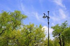 Helle Lampe des Gartens Stockfotografie