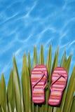 Helle Pool-Schuhe stockbild