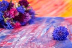 Helle rosa-blaue Kornblumen auf Hintergrund Lizenzfreie Stockfotografie