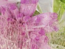 Helle rosa und grüne Zusammenfassung Lizenzfreie Stockfotografie
