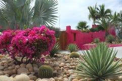 Helle rosa Wand und Blumen Stockbilder