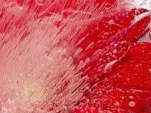Helle rote eisige Abstraktion Lizenzfreie Stockbilder