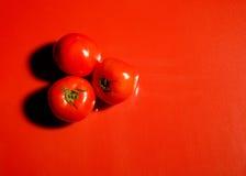 Helle rote Tomaten Stockbild