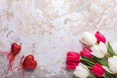 Helle rote und weiße Tulpenblumen und zwei rote Herzen auf Grau Lizenzfreie Stockfotos