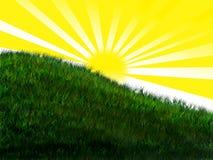 Helle Sonne auf grasartigem Hügel Lizenzfreie Stockbilder