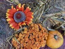 Helle und sonnige Sonnenblume mit Mamas und Kürbisen Lizenzfreies Stockbild