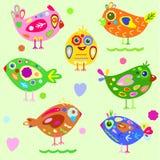 Helle Vögel Stockfotos