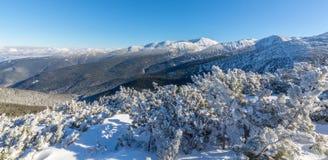 Helle Winterlandschaft in den Bergen, wenn dem Frost und Felsen mit frischem Schnee bedeckt sind Lizenzfreie Stockbilder