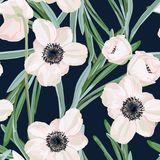 Seamless pattern with white anemone flowers and eucalyptus. Winter floral design for wedding invitation. Hellebore anemone Christmas winter rose floral seamless Stock Photos