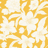Hellebore Christmas rose flowers pattern yellow Royalty Free Stock Image