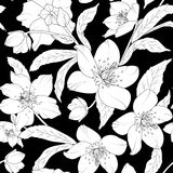 Hellebore floral foliage pattern white on black Stock Photo