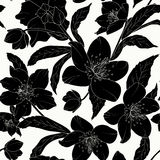 Hellebore floral seamless pattern black tattoo Royalty Free Stock Photos