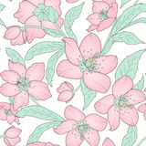 Hellebore floral seamless pattern pink green white vector illustration