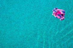 Heller aufblasbarer Flamingo, der im Pool mit blauem und klarem Wasser mit Wellen treibt stockfotografie