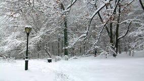 Heller Beitrag im Central Park Lizenzfreie Stockfotos