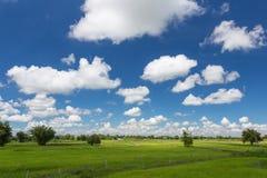 Heller blauer Himmel Stockfotos