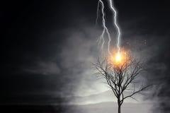 Heller Blitz schlug den Baum Stockfotos