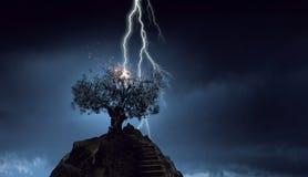 Heller Blitz schlug den Baum Lizenzfreie Stockfotos
