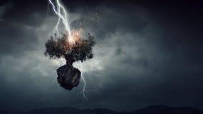 Heller Blitz schlug den Baum Lizenzfreies Stockbild